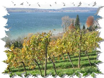 Impression Bodensee